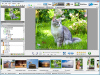 Artensoft Photo Editor 1.3
